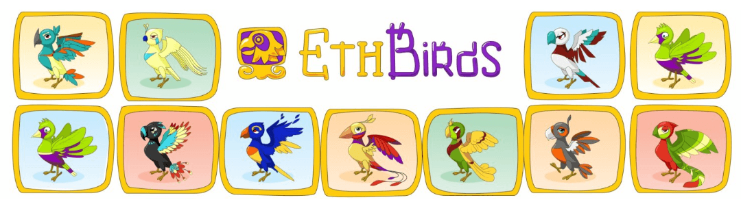ETH Birds project