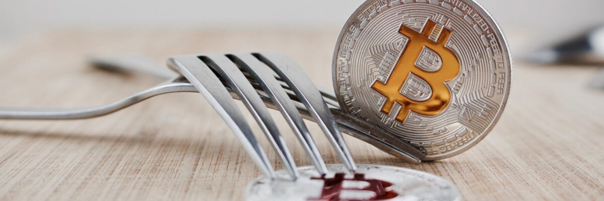 WHAT ARE CRYPTOCURRENCY FORKS?