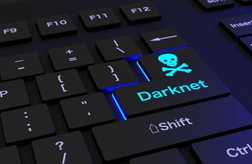 The Darknet
