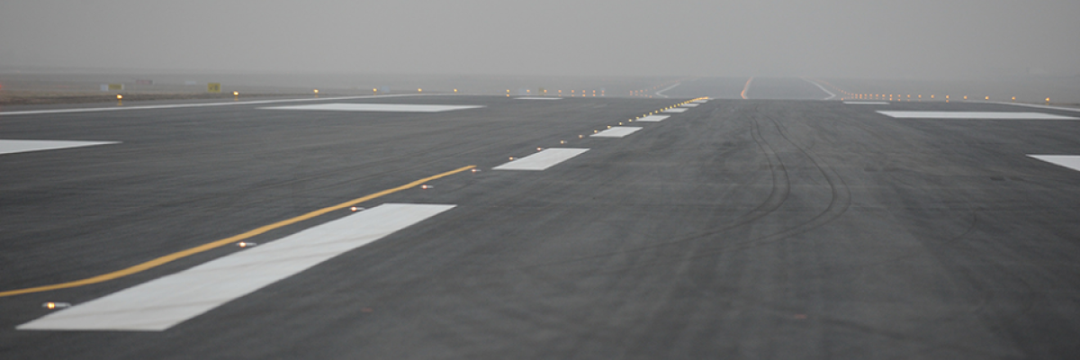 Bacteria will help build landing strips for US Air Force