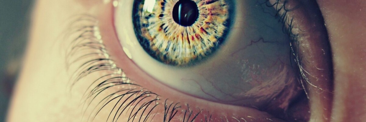 It Takes Just an Eye Exam: Scientists Find a Way to Diagnose Alzheimer Disease at Early Stages