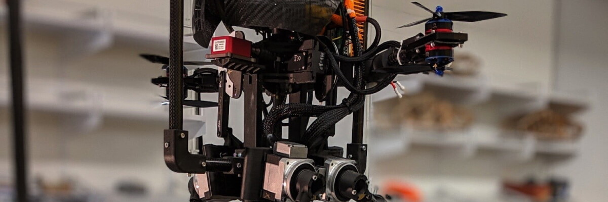 Leonardo: A bird-like robot - Hitecher
