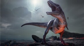 Scientists discover T-Rex ancestor