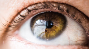 Scientists pioneer transplantation of cornea made from stem cells