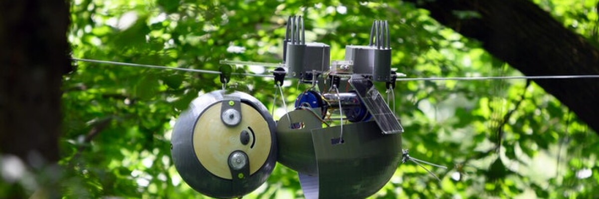 The Atlanta Botanic garden has recruited a SlothBot robot