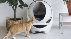 The smart litter box that will save a lot of hassle for cat owners